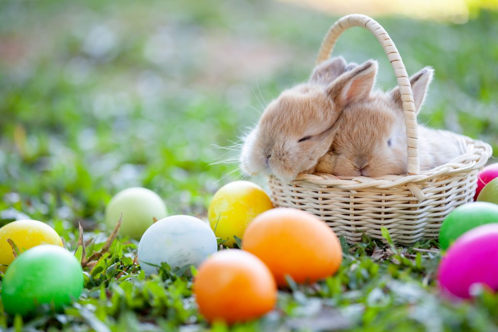 Easter Celebrations in L.A.